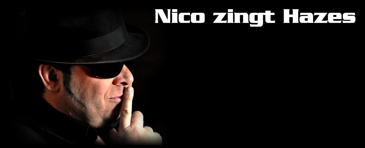 header nicozingthazes alle coverbands